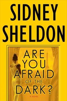 Are You Afraid of the Dark?: A Novel