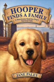 Hooper Finds a Family: A Hurricane Katrina Dog's Survival Tale, Paley, Jane