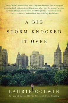 A Big Storm Knocked It Over: A Novel, Colwin, Laurie
