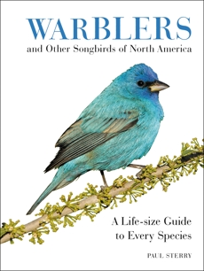 Warblers and Other Songbirds of North America: A Life-size Guide to Every Species, Sterry, Paul