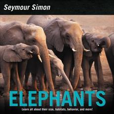 Elephants, Simon, Seymour