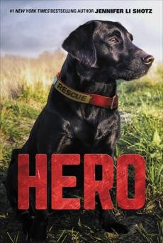 Hero, Shotz, Jennifer Li