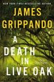 A Death in Live Oak: A Jack Swyteck Novel, Grippando, James