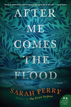 After Me Comes the Flood: A Novel, Perry, Sarah