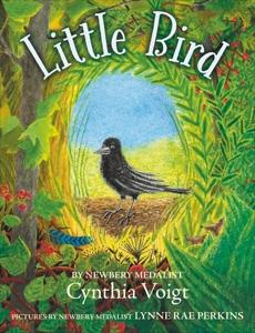 Little Bird, Voigt, Cynthia