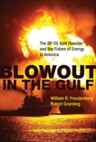 Blowout in the Gulf: The BP Oil Spill Disaster and the Future of Energy in America, Freudenburg, William R. & Gramling, Robert