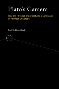 Plato's Camera: How the Physical Brain Captures a Landscape of Abstract Universals