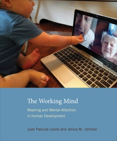 The Working Mind: Meaning and Mental Attention in Human Development