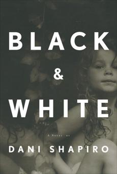 Black & White, Shapiro, Dani