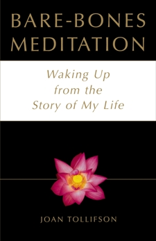 Bare-Bones Meditation: Waking Up from the Story of My Life, Tollifson, Joan