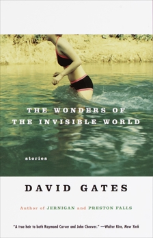 The Wonders of the Invisible World, Gates, David