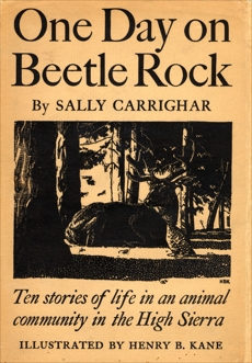One Day On Beetle Rock, Carrighar, Sally