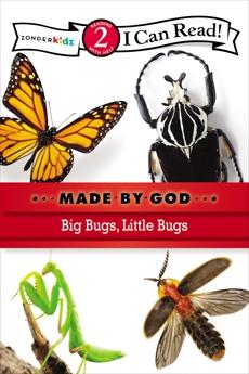 Big Bugs, Little Bugs: Level 2, Zondervan,