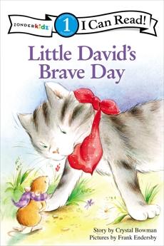 Little David's Brave Day: Level 1, Bowman, Crystal