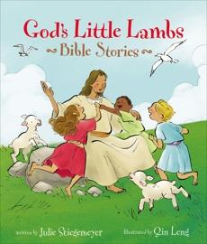 God's Little Lambs Bible Stories, Stiegemeyer, Julie