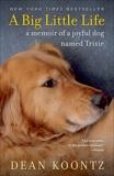 A Big Little Life: A Memoir of a Joyful Dog Named Trixie, Koontz, Dean