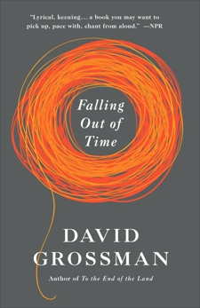 Falling Out of Time, Grossman, David