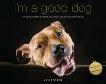 I'm a Good Dog: Pit Bulls, America's Most Beautiful (and Misunderstood) Pet, Foster, Ken
