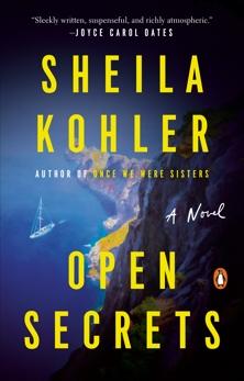 Open Secrets: A Novel, Kohler, Sheila