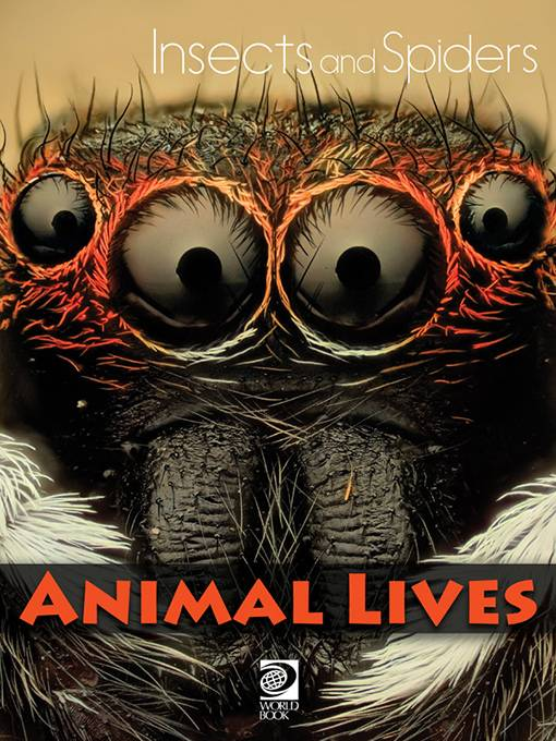 Insects and Spiders, World Book