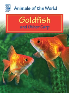 Goldfish and Other Carp, World Book