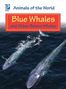 Blue Whales and Other Baleen Whales, World Book