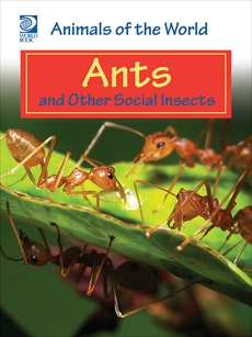 Ants and Other Social Insects, World Book