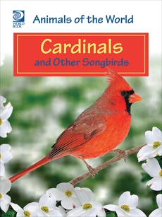 Cardinals and Other Songbirds, World Book