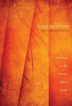 Cardinal in the Eastern White Cedar, Borson, Roo
