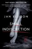 A Small Indiscretion: A Novel, Ellison, Jan