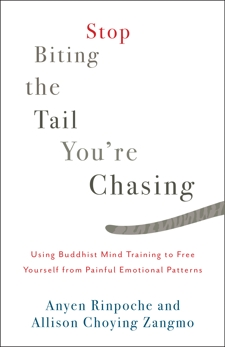 Stop Biting the Tail You're Chasing: Using Buddhist Mind Training to Free Yourself from Painful Emotional Patterns, Zangmo, Allison Choying & Rinpoche, Anyen
