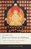 A Guide to the Thirty-Seven Practices of a Bodhisattva, Tenzin Norbu, Ngawang