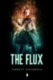 The Flux, Steinmetz, Ferrett