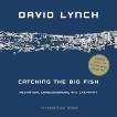 Catching the Big Fish: Meditation, Consciousness, and Creativity: 10th Anniversary Edition, Lynch, David