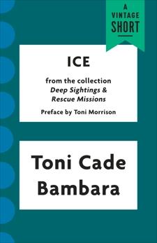 Ice, Bambara, Toni Cade