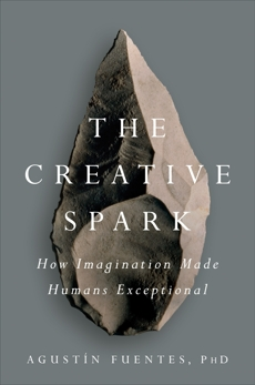 The Creative Spark: How Imagination Made Humans Exceptional, Fuentes, Agustín