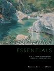 Brushwork Essentials, Weber, Mark Christopher