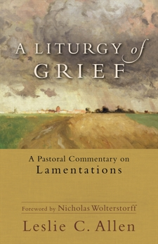 A Liturgy of Grief: A Pastoral Commentary on Lamentations, Allen, Leslie C.