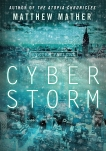 Cyberstorm: A Novel, Mather, Matthew