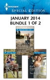 Harlequin Special Edition January 2014 - Bundle 1 of 2: An Anthology, Darcy, Lilian & Banks, Leanne & Madison, Tracy