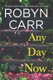 Any Day Now: A Novel, Carr, Robyn