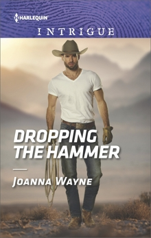 Dropping the Hammer: A Thrilling FBI Romance