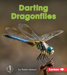 Darting Dragonflies, Nelson, Robin