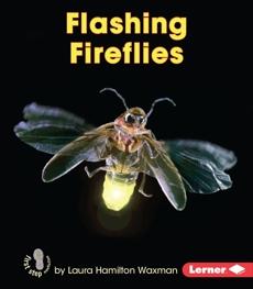 Flashing Fireflies, Waxman, Laura Hamilton