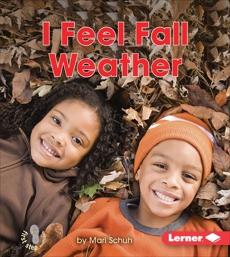 I Feel Fall Weather, Schuh, Mari
