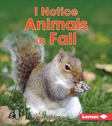 I Notice Animals in Fall, Schuh, Mari