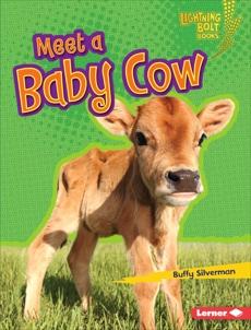 Meet a Baby Cow, Silverman, Buffy