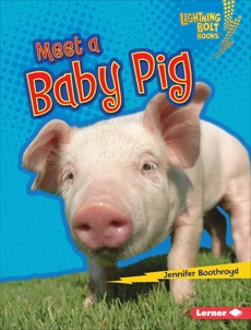 Meet a Baby Pig, Boothroyd, Jennifer
