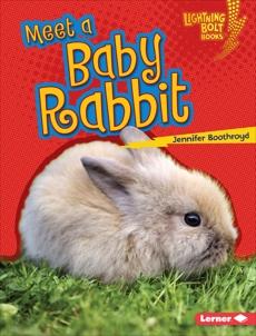 Meet a Baby Rabbit, Boothroyd, Jennifer