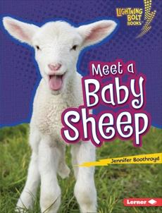 Meet a Baby Sheep, Boothroyd, Jennifer